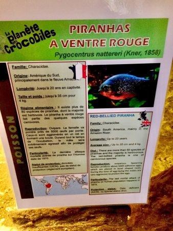 Civaux, Francia: Un lieu sympathique mais cher