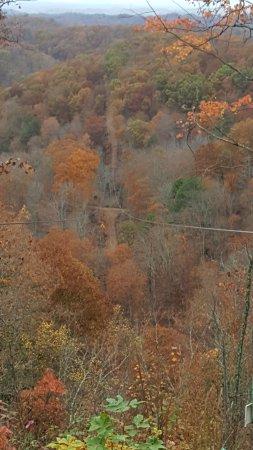 Elizabethton, TN: Another zip line shot