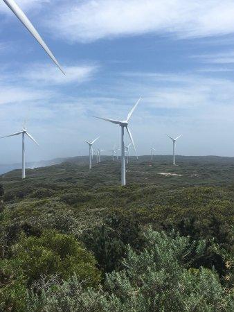 Albany, أستراليا: photo1.jpg