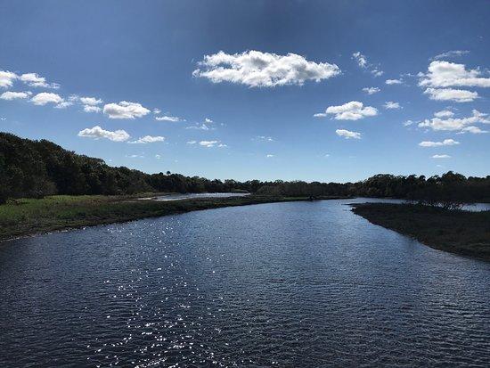 Myakka River State Park: photo7.jpg