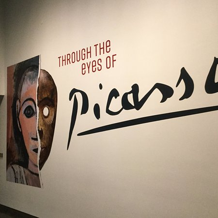 The Nelson-Atkins Museum of Art: Picasso