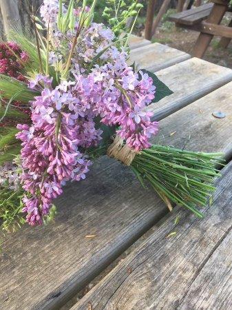 Siempre Con Detalles Florales Naturales Picture Of New Bakery - Detalles-florales