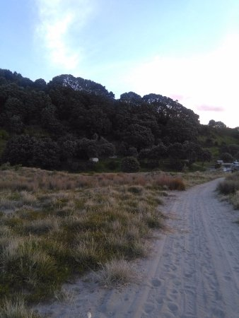 Opotiki, Nueva Zelanda: walking back to the campsite from the beach