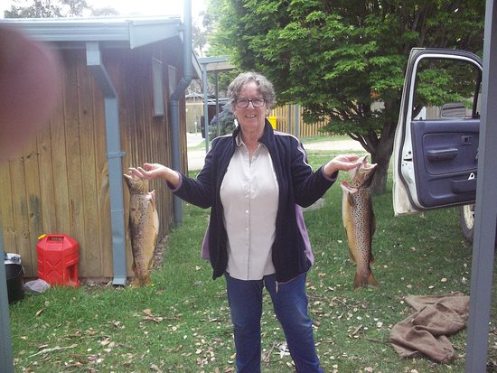 Adaminaby, ออสเตรเลีย:  The fishing at Anglers Reach Lakeside Village