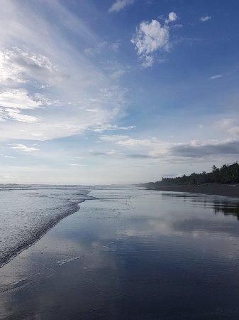 Playa Matapalo, Costa Rica: 20171029_153233_large.jpg