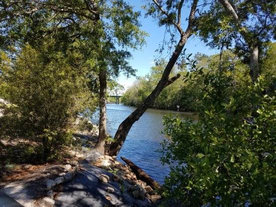 Conway, SC: another view on walk