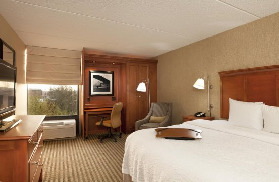 Schiller Park, IL: King Accessible Room