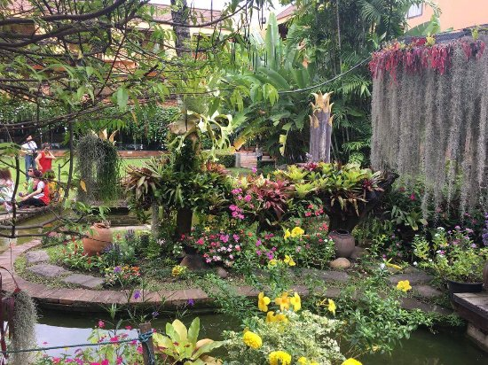 Holiday Garden Hotel: Garden