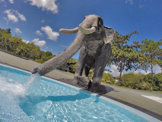Yapahuwa, Sri Lanka: Outdoor Pool