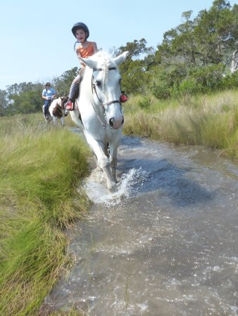 Saint Simons Island, GA: Marsh rides are available for riders 7 years and up!