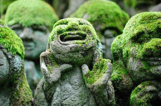 Private 3-stündige Kyoto Arashiyama...
