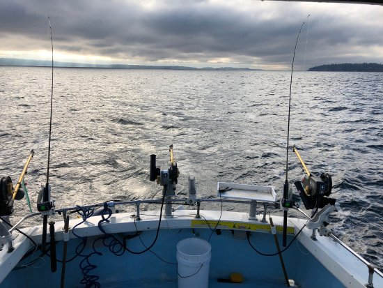 Picture of fish finders private charters for Seattle washington fishing charters