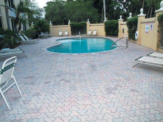 La Quinta Inn & Suites Sarasota Downtown: PoolView