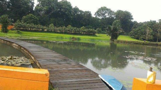 Lake Dora