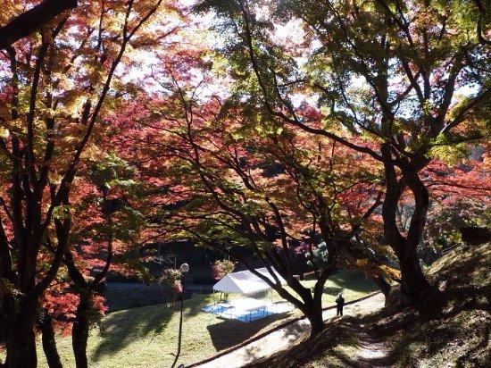 Gotenyama Park