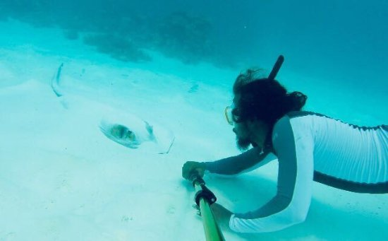 Maafushi Island: This is Haidey spotting a sting ray.