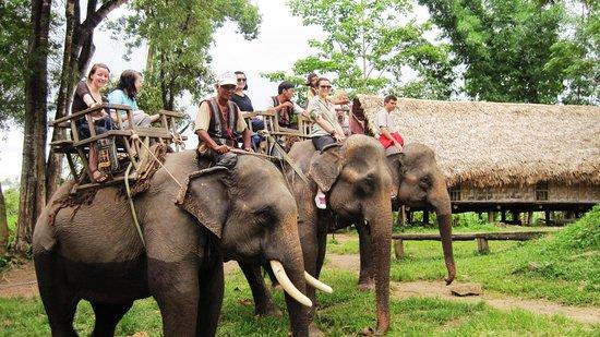 Kontum, Vietnam: Elephant ride