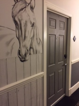 The Kimpton Brice Hotel: Horses are my passion so this was a fun surprise greeting me outside my door