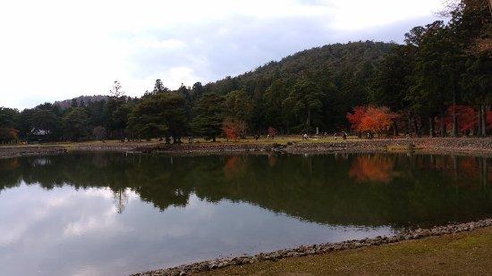 Motsuji Temple: DSC_3464_large.jpg
