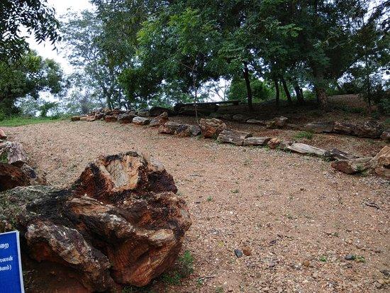 Фотография Villupuram