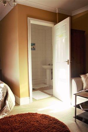 Llanedi, UK: family room shower room