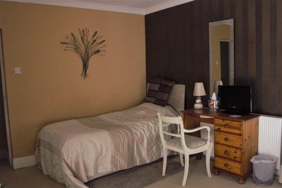 Llanedi, UK: single bed in family room