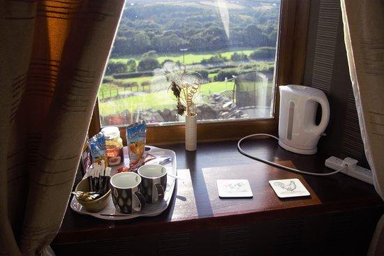 Llanedi, UK: view from family room