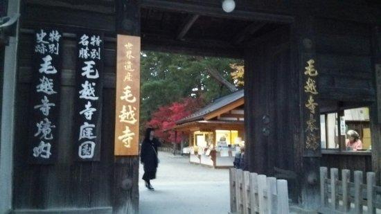 Motsuji Temple: DSC_1310_large.jpg