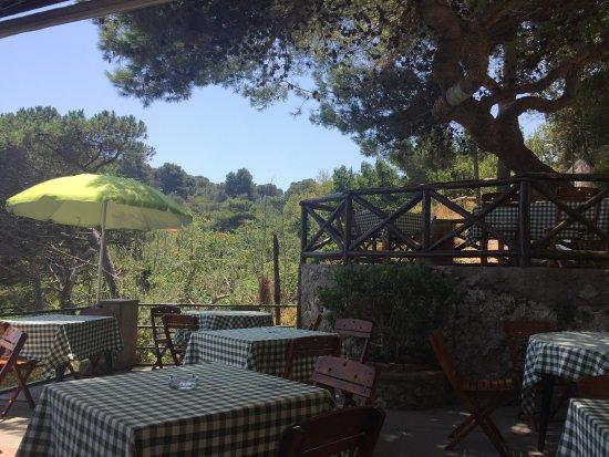 Le Grottelle: Terrasse du restaurant au sein d'une belle nature