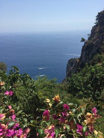 Le Grottelle: Vue de la terrasse du restaurant