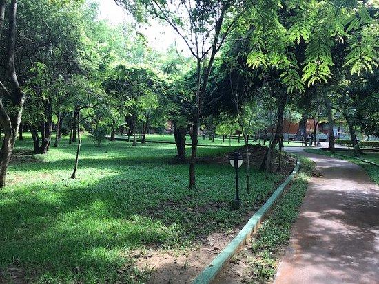 Heritance Kandalama Photo