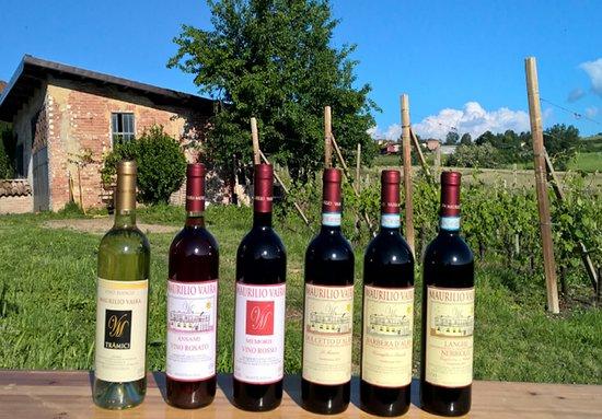 Narzole, Włochy: I nostri grandi vini delle Langhe