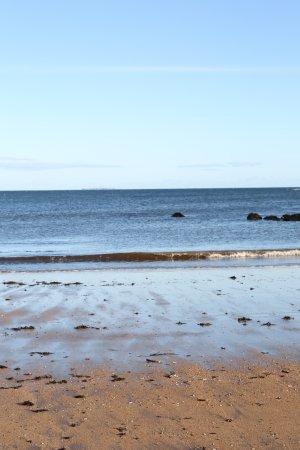 Dirleton, UK: Yellowcraig Beach In November
