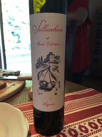 Pietralunga, Italy: Wine tasting, best ever sour cherry wine.