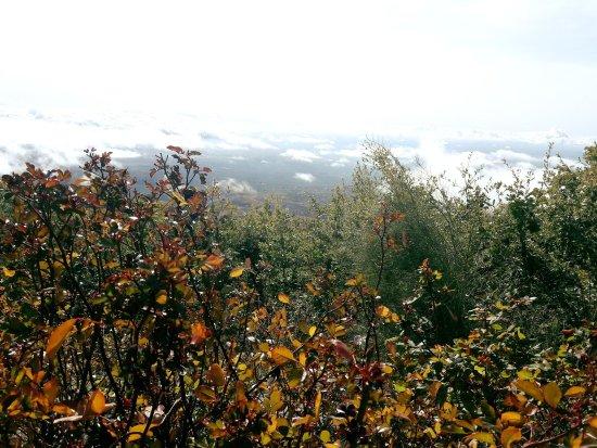 Ragalna, Italien: IMG_1510406647036_large.jpg