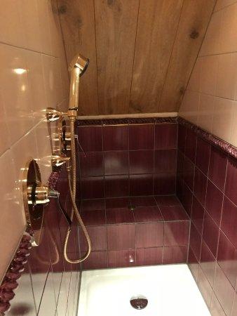 Oegstgeest, Nederland: Shower
