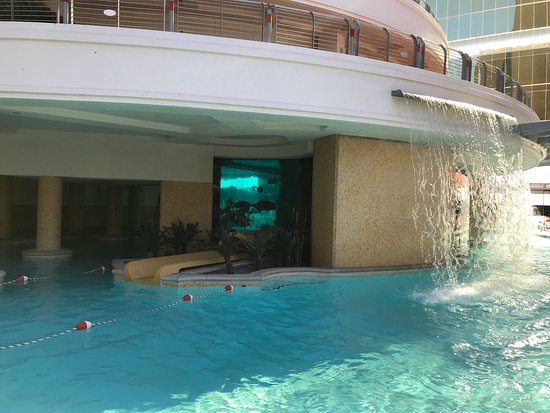 Golden Nugget Hotel: photo4.jpg