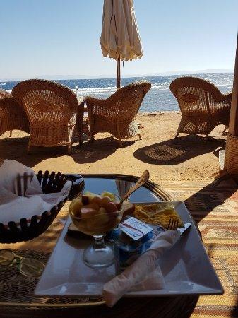 Acacia Dahab Hotel: 20171101_102839_001_large.jpg