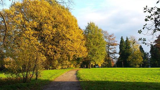 De Lutte, Niederlande: Genieten van herfstkleuren in de tuin van de Wilmersberg
