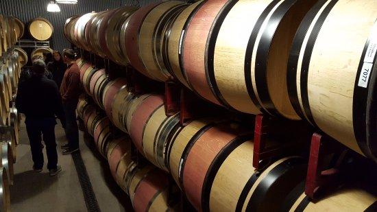 Oakville, Kalifornia: Barrel room