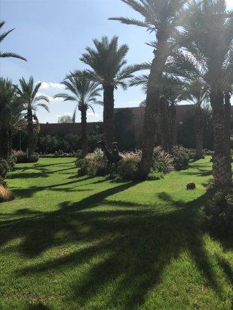 Kenzi Club Agdal Medina Photo