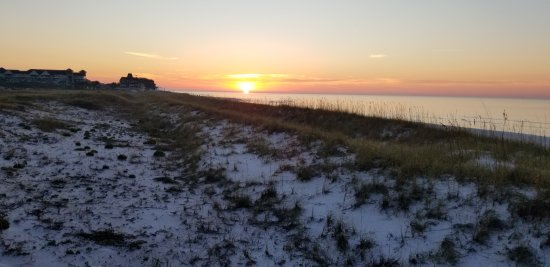 Henderson Beach State Park Campground-billede
