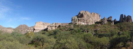 Sonora-billede