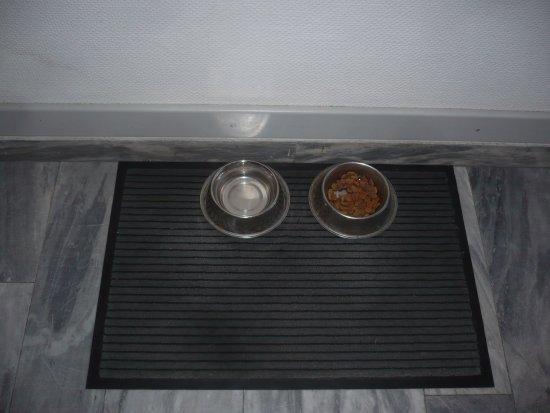Residenz Hotel Harzhöhe : Für Hunde, steht dieser Service im Hotel zur Verfügung.