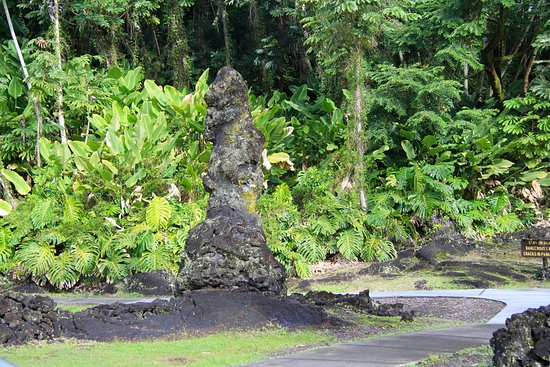 Lava Tree State Park: Examples of Lava Trees