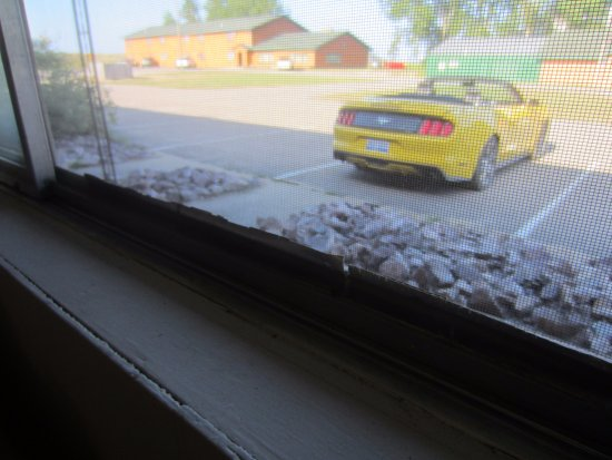 Grand Marais, MI: Duct tape holding torn window screens together