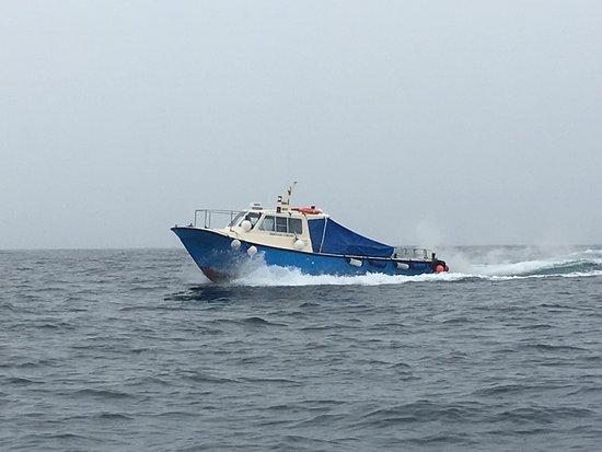 Portmagee, ไอร์แลนด์: Barche in navigazione!