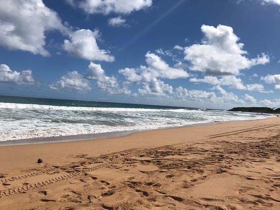 Kealia, Hawaï: beach
