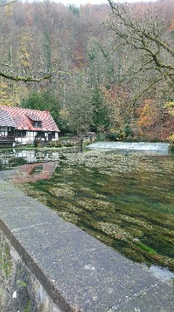 Blaubeuren, Germania: DSC_1686_large.jpg