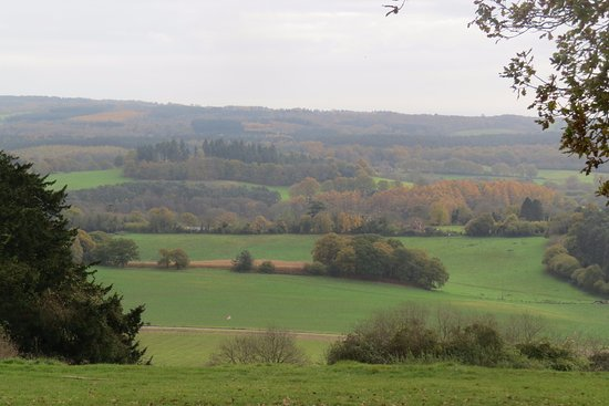 Shere, UK: Beautiful Newlands Corner, Guildford.